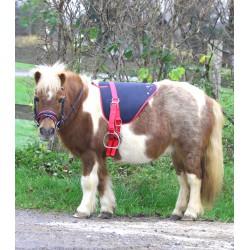 Bare back pad Unicorn Shetty