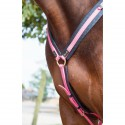 Collier De Chasse Biotack® martingale amovible