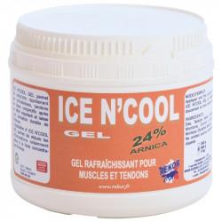 Ice N' Cool Gel Rekor
